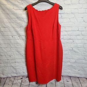 💜2/$40 NWT Loft Ponte Sheath Dress
